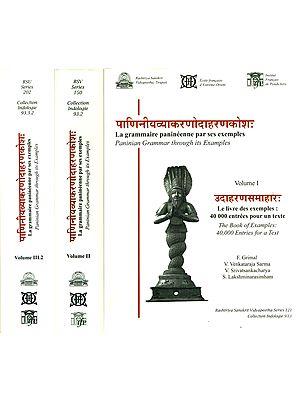 Paninian Grammar Through its Examples (Three Big Volumes)
