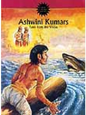 Ashwini Kumars: Tales from the Vedas (Paperback Comic Book)