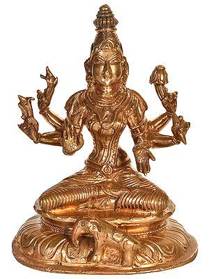 Dhanakshmi