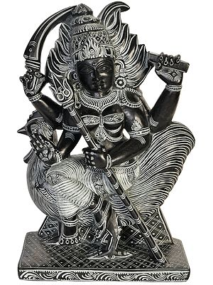 Bahucharji - Devi Who Rides a Cock (Goddess Worshipped by Eunuchs)