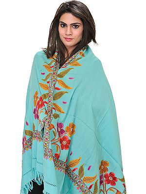 Stole from Kashmir with Ari Hand-Embroidery on Border